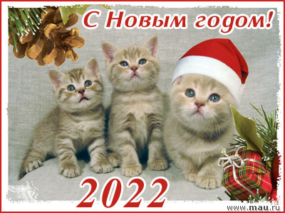 C Новым годом!